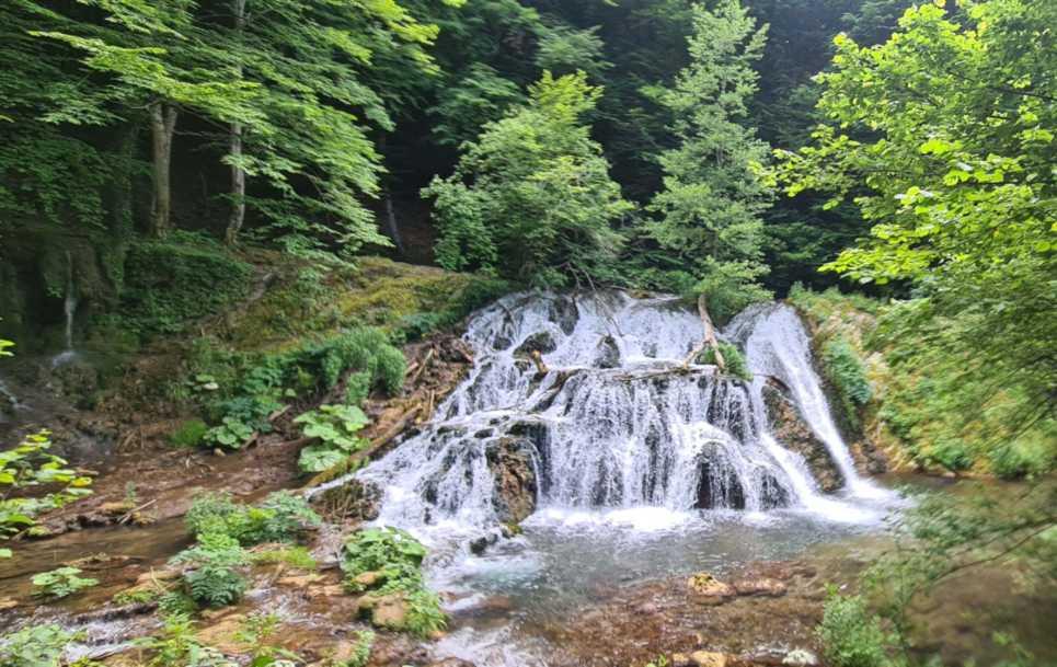 "Day trip ""Nature & Adventure"""